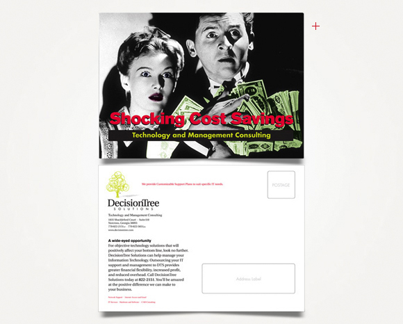 Print - DecisionTree Solutions, Inc. - Direct Mail Campaign